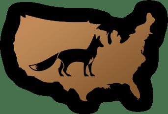 usa-fox-min