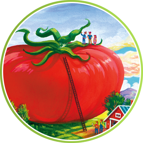 Round Tomato Careers